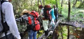 Découvrez l'Amazonie en dix épreuves