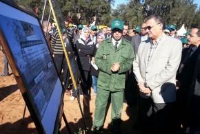 القنيطرة ..عامل الإقليم يشرف على إنطلاق عملية غرس مليون شجرة
